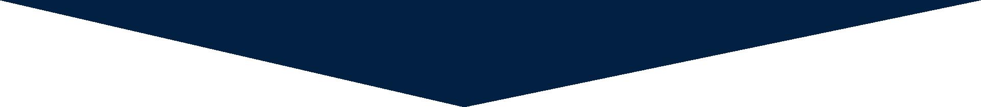 CROSSMARK blue triangle